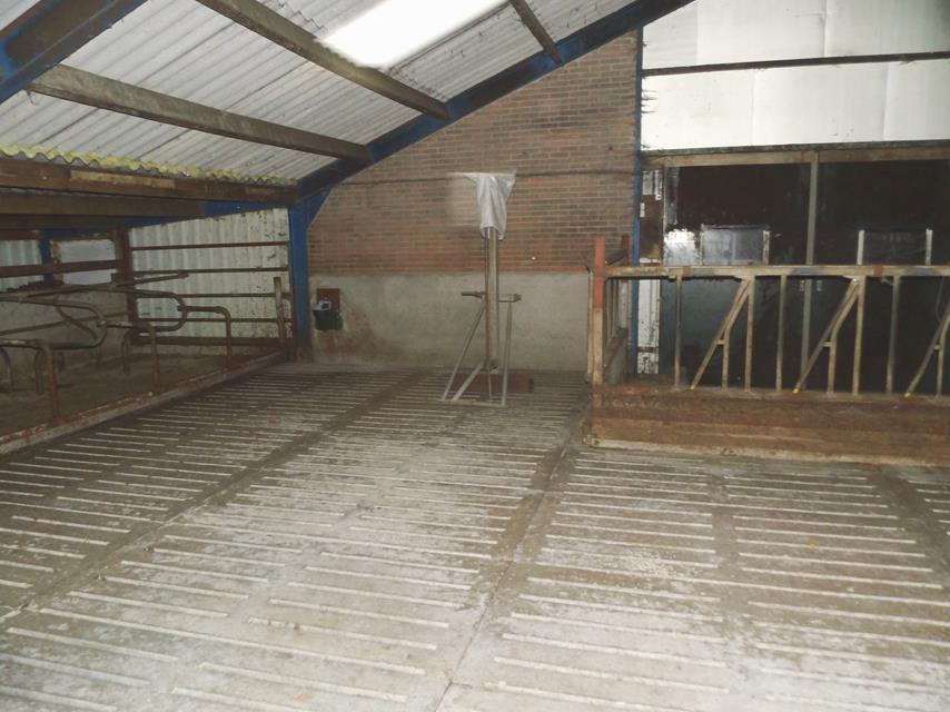 wilt u een stal laten bouwen? stallenbouw van aannemersbedrijf Wielink bouwt graag voor u.